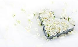 Roses dans un plateau en forme de coeur en métal Photo stock