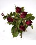 Roses dans une vue en verre claire de vase à partir de dessus Image stock