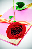 The roses day Stock Images