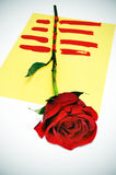 The roses day Royalty Free Stock Photography