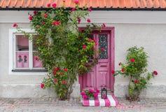 Roses décorant l'entrée de maison Photographie stock libre de droits