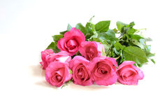 Roses de bouquet pour le Saint Valentin, sur le fond blanc Photos libres de droits