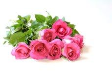 Roses de bouquet pour le Saint Valentin, sur le fond blanc Photographie stock libre de droits