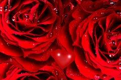 roses de coeur Photos libres de droits