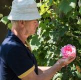 Roses de coupe d'homme supérieur photo stock
