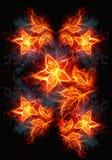 Roses de floraison d'illustration du feu et de flammes sur un fond noir illustration stock