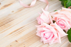 Roses de floraison roses sur le bois Photographie stock libre de droits