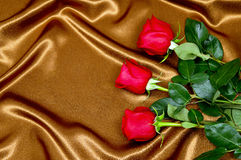 Roses de fond sur le tissu Image libre de droits