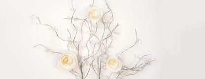 Roses de livre blanc sur les branches argentées sur le fond blanc Configuration plate, vue supérieure Fond de jour du ` s de Vale photo stock
