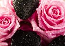 Roses de station thermale Image libre de droits