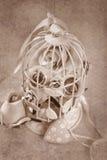 Roses de style de vintage dans la cage en métal Images libres de droits