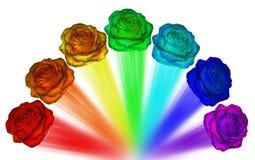 Roses de toutes les couleurs de l'arc-en-ciel Photos stock