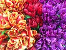 Roses de valentines, fleurs photographie stock