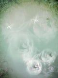 Roses de vintage Images stock