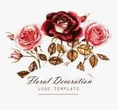 Roses de vintage dans l'illustration d'aquarelle Élément pour la conception des invitations, des affiches, du logo, des bannières Photos stock