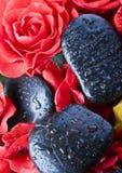 Roses de zen Images libres de droits