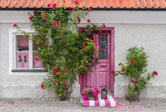 Roses decorating the house entrance Royalty Free Stock Photography