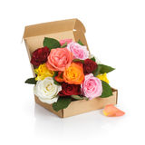 Roses Delivery Stock Photography