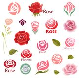 Roses design elements Stock Images