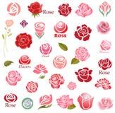 Roses design elements stock illustration
