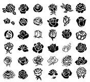 Roses design elements Royalty Free Stock Image