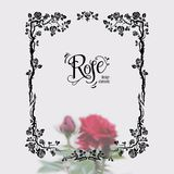Roses design frame Stock Photography