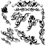 Roses design set. Set of roses floral calligraphic design elements - black and white vector flower swirls Stock Photo