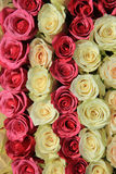 Roses in different shades of pink, bridal arrangement Royalty Free Stock Photography