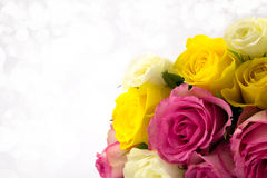 Roses with diffused background. Pink,yellow and white roses with a soft diffused background Stock Photos