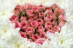 Roses disposées dans la forme de coeur Image libre de droits