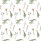 Roses, dry branches and fern seamless pattern Stock Photo