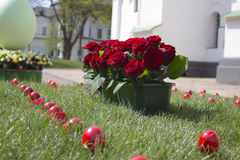 Roses and Easter eggs Stock Photography
