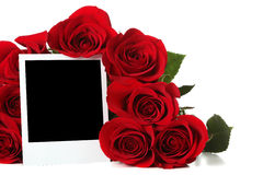 Roses with empty photo. Bouquet of roses with empty photo Stock Photography