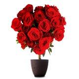Roses en forme de coeur Image libre de droits