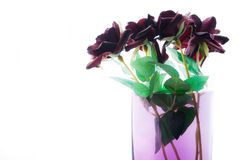 Roses en soie Image stock