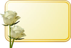 Roses et étiquette enes ivoire de message Images stock