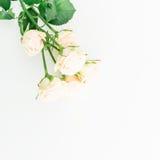 Roses et bourgeons sur le fond blanc Configuration plate, vue supérieure Cadre floral fait de fleurs Photo stock