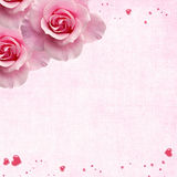 Roses et coeurs Image stock