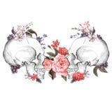 Roses et crâne, jour des morts, vecteur Images libres de droits