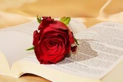 Roses et foi Photo libre de droits