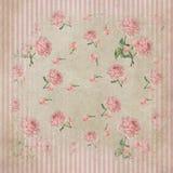 Roses et fond minables élégants de rayures Photographie stock libre de droits