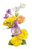 Roses et freesia d'isolement photographie stock