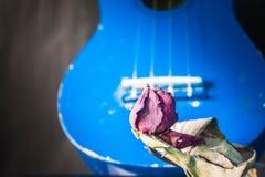 Roses et guitares sèches Image libre de droits