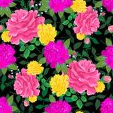 Roses roses et jaunes 2 Photographie stock libre de droits