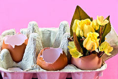 Roses et oeufs de Brown jaunes image stock