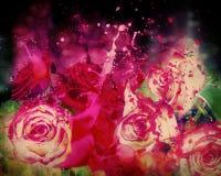 Roses et peinture d'éclaboussement Photos stock