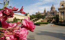 Roses et un musée Photographie stock libre de droits