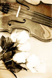 Roses et un violon Photographie stock