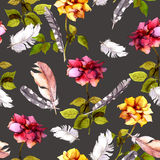 Roses and feathers. Seamless pattern. Watercolor Stock Image