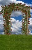 Roses in the Field. A premade background for your art projects Royalty Free Stock Photos